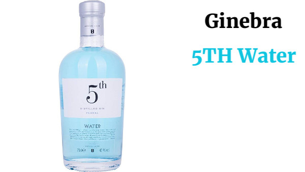 5TH Water Ginebra - 700 ml